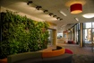 The Living Wall is a great interior or exterior landscape design solution.